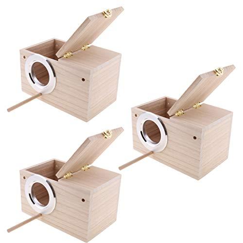 B-Blesiya-3-Pezzi-Casetta-per-Uccelli-di-Legno-per-Cocorite-Casa-per-Pappagalli-Uccelli-Scatola-di-Allevamento-MLXL