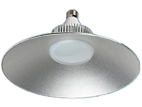 FYN LED Plafonniers 20W Argent Diamètre rond 25cm, Simple, Lumière