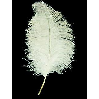 AEC - PL7810/BLANC  - Plume autruche luxe env 50 cm blanc