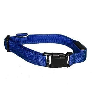 Aviditi BC701-M LED Lighted Dog Collar, Blue with Blue LED Lights, Medium by Aviditi