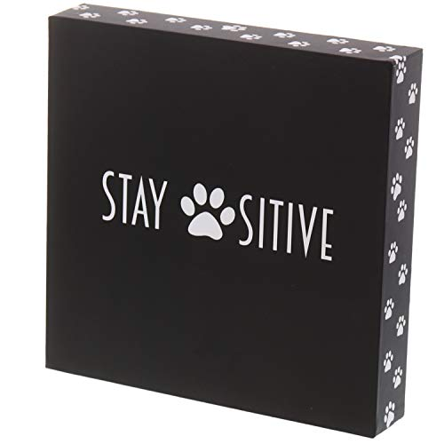 Barnyard Designs Stay Positive Cat und Dog Box Sign Rustikal Holz Motivational und inspirierendes Zitat Wand Decor 20,3 x 20,3 cm -
