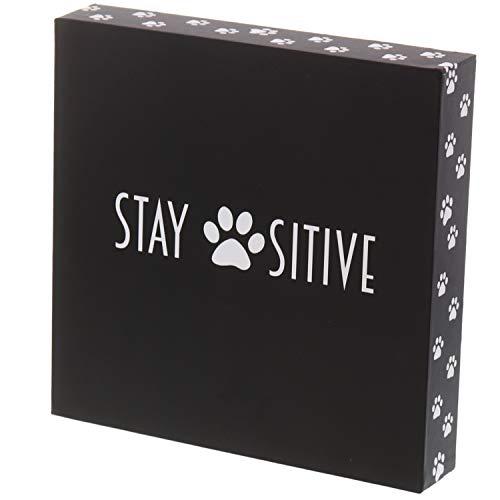 Barnyard Designs Stay Positive Cat und Dog Box Sign Rustikal Holz Motivational und inspirierendes Zitat Wand Decor 20,3x 20,3cm
