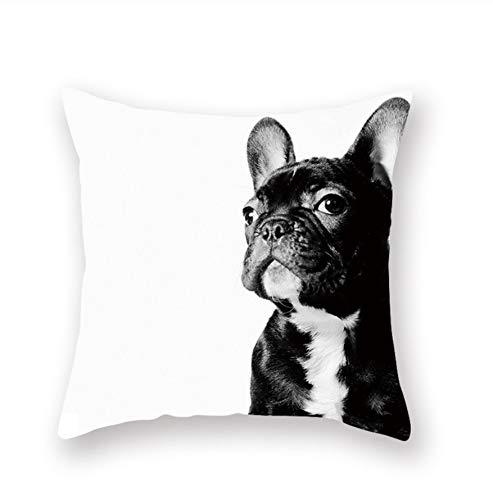 qhtqtt Fundas De Cojines para Sofá Pug Dog Bulldog Francés Funda De...