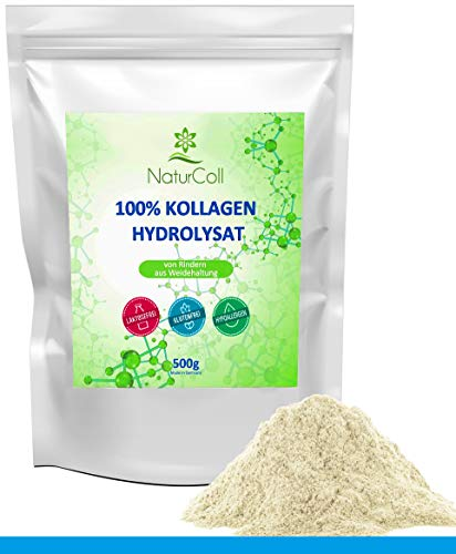 Kollagen Pulver aus Weidehaltung • 100% Kollagen Hydrolysat • 100% Protein • Collagen Powder Typ 1 und 2 • Paleo, Atkins, Keto und Low Carb Diät • 500g • Hergestellt in Deutschland