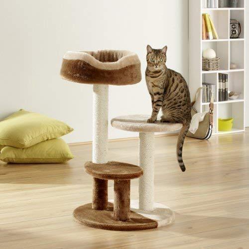 Produktabbildung von Katzenkratzbaum KIMBA creme/braun 78 cm