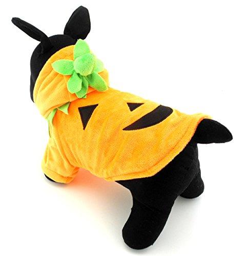 zunea Kürbis Halloween-Kostüm für kleine Hunde Samt Kapuzen Puppy T-Shirt Coat Schlafanzüge Pet Cosplay Geburtstag Party Kleidung Bekleidung