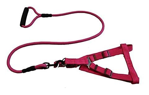 FSOSOO tissu chien Leash harnais poignées rembourrées pied formation de