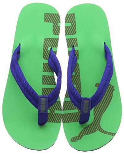 best cheap 559a1 a111b ᐅᐅ surf flip flops Test war gestern & Preisvergleich ist heute