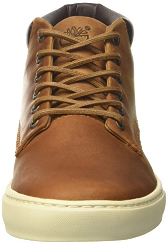 classic shoes great look united kingdom Timberland Adventure 2.0 Cupsole, Stivali Chukka Uomo ...