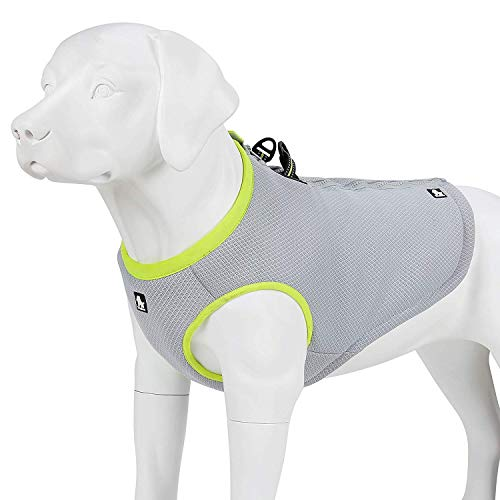 Solo-verstellbare Bügel (Hund Kühlweste for Hunde Kühl-Weste Hundekühler Reflektierend Atmungsaktive Verstellbar Sommer (Color : Green, Size : XL))