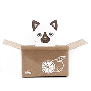 Lindo Gato Perro Scrapbooking Publicar