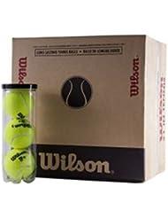 Wilson TP Plus Pelotas Tenis / Padel Caja 48 pelotas