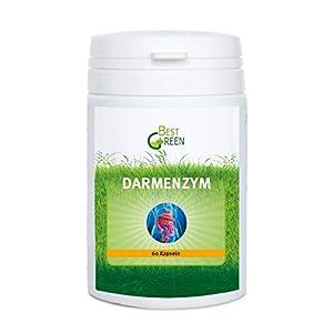 Darmenzym – Mischung aus den Verdauungs-Enzymen Amylase, Cellulase, Lactase, Lipase, Protease – mit dem Bakterium Bacillus coagulans und wertvollen Pflanzenzubereitungen – 60 hochdosierte Kapseln