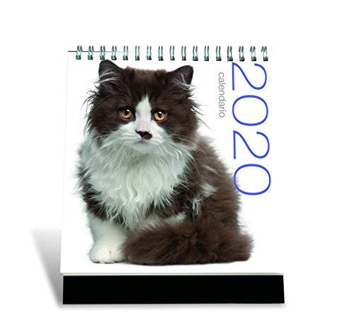 Gatti. Calendario 2020 da tavolo