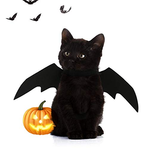 Lager Show Pet Halloween Bat Wings Kostüm, Katze Hund Cool Bat Wings Cosplay Kostüm Zubehör für Halloween Urlaub Thema Party, schwarz (Geist Halloween Katze Kostüm)