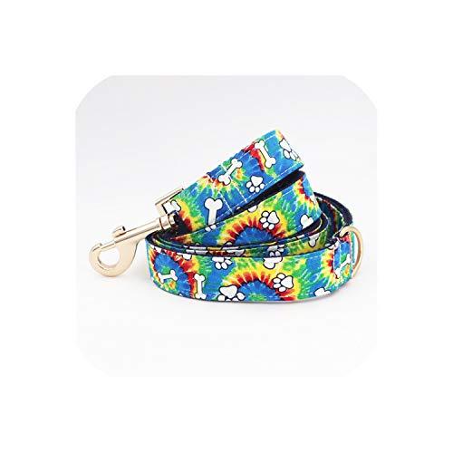 Solardream Dog Collar Bunte Knochen Hundehalsband Fliege mit Metallschnalle Große und kleine Hund & Katze; Kragen-Haustier-Zubehör, Leine, M (30-45cm Länge)