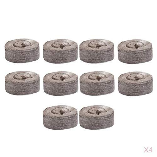 Nährstoff-kit (LOVIVER 40pcs Sämling Bodenblock Quelltabletten mit Nährstoff zur Anzucht von Stecklingen)