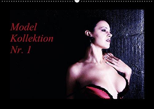 Model Kollektion Nr. 1 (Wandkalender 2015 DIN A2 quer): Erotische Frauen sinnlich - schön - sehnsuchtsvoll! (Monatskalender, 14 Seiten) (Dessous-kollektion)