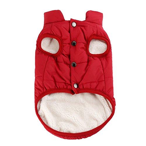 Woopower warmer Hundemantel, winddichte Welpenweste Jacke Haustier Winter Kleidung für kleine/mittlere/große Hunde, Größen: XS-3XL (Dunklen Hund Halloween-kostüm)