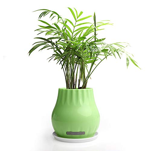 qiyannew Música Flower Pot Creative Can Play Piano Sound Disk Outdoor Home...