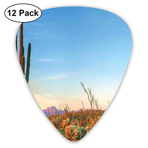 Guitar Picks - Abstract Art Colorful Designs,Sun Goes Down In Desert Prickly Pear Cactus Southwest Texas National Park,Unique Guitar Gift,For Bass Electric & Acoustic Guitars-12 Pack Black Down Parka