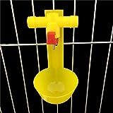 Qindoo 10 Prodotti Chicken Tee Drinking Ball Drinking Sistema per Bere Acqua di Pollo Nipple Drinking Cup -Yellow, M