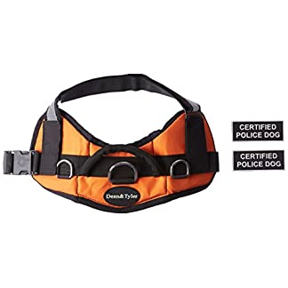 Dean & Tyler DT Works Certified Police Dog Dog Harness, Fits Girth Size 25-Inch to 34-Inch, Small, Orange/Black 12
