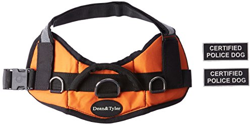 Dean & Tyler DT Works Certified Police Dog Dog Harness, Fits Girth Size 25-Inch to 34-Inch, Small, Orange/Black 1