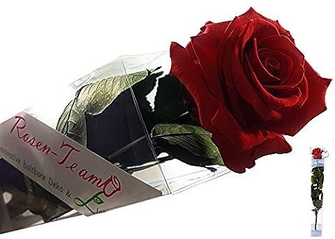 Rosen-te-amo Konservierte Rose (Echte Konservierte Blume) – OHNE WASSER Haltbare Rose Set mit Karte - Unvergängliche Rote Rose