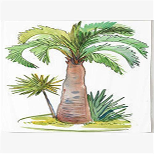 Daawqee Tapestries Wall Hangings 60 x 50 Inches Color Watercolor Coconut Palm Art Trees Nature Desert Wall Hanging Tapestries Decor Home Bedroom Living Kids Girls Boys Room Dorm