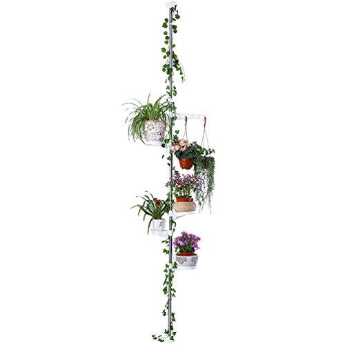 Pflanztische    (17