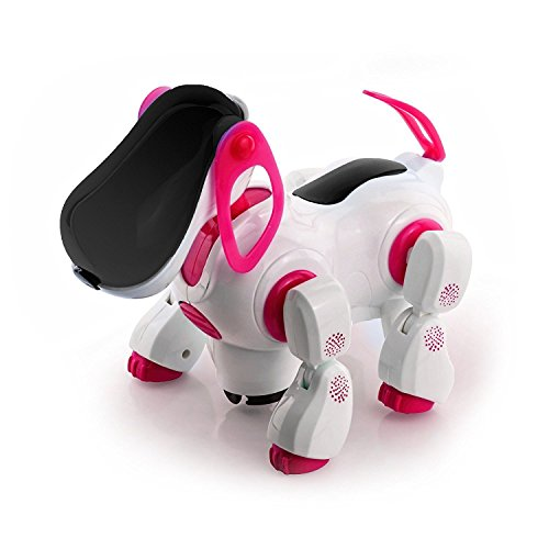NMIT Childrens Puppy, Flashing L...