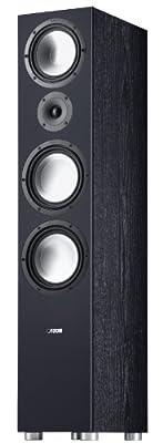 Canton GLE 496 Diffusore da Pavimento, Nero in promozione su Polaris Audio Hi Fi