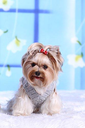 Doggy Dolly W073 Strickpullover für Hunde, grau, Winter, Größe : XXL - 4
