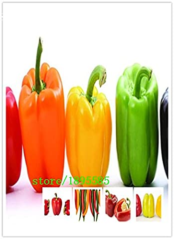 50 Rare Indian Ghost Chili Pepper Seeds, the Hottest Pepper