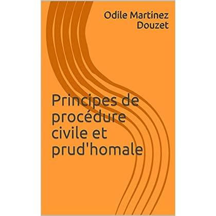 Principes de procédure civile et prud'homale