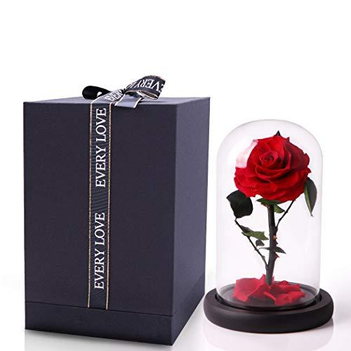 JTTVO Die Schöne und das Biest Rosen im glas konservierte echte rosen besondere geschenke für frauen forever rose jahrestag geschenk für sie valentinstag geschenke zum muttertag geschenk(Red)