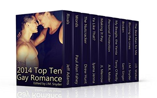 2014-top-ten-gay-romance-english-edition