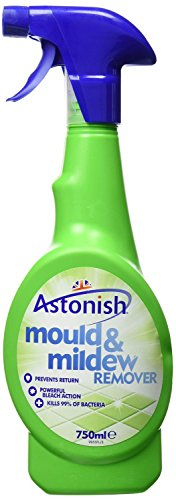 2-x-astonish-mould-mildew-remover-750ml