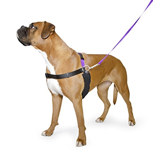 ancol-pure-dog-listeners-stop-pulling-dog-training-harness-lead-set-large-size-7-8-inc-dvd