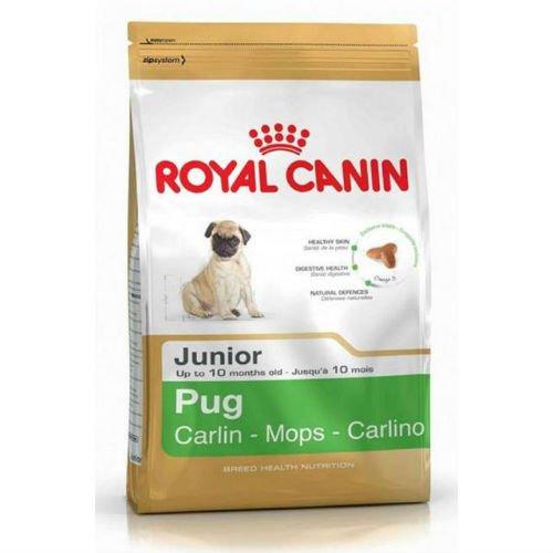 Royal canin carlino junior pienso carlino joven