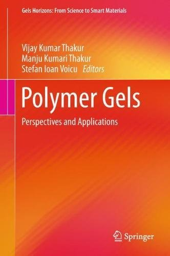 Polymer Gels: Perspectives and Applications (Gels Horizons: From Science to Smart Materials)