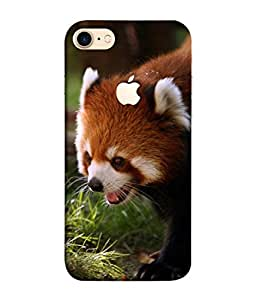 PrintVisa Beautiful Panda 3D Hard Polycarbonate Designer Back Case Cover for Apple iPhone 7 (Logo View Window Case)