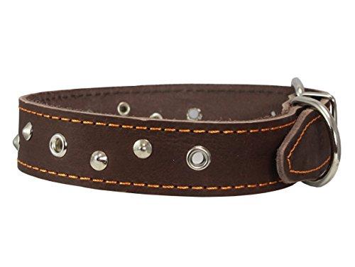 Dogs My Love Echt Leder Zughalsband Hunde Halsband, 3,2cm Breit. Passt 40,6cm 19