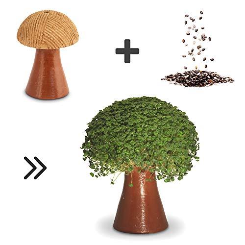 CHIA SAMEN zu SPROSSEN ANZUCHTSET - Geschenk für Frauen Männer & Kinder - 100% Handgemachte Tonfigur zum natürlichen Keimen gesunder veganer ChiaSamen für viel Omega 3 - inkl. Samen (Pilz) -