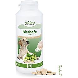 AniForte Bierhefe Tabs 500 Stück - Naturprodukt für Hunde, Glänzendes, kräftiges Fell, Vitale Haut, Allgemeinen Stärkung & Förderung der Kondition, Appetit-anregend, Wichtige Vitamine & Mineralstoffe