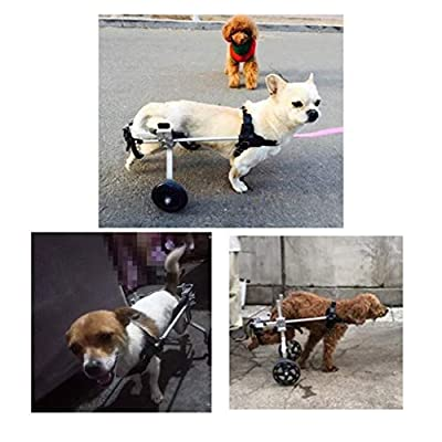 DUANJY Pet Wheelchair Pet Wheelchair, XXS Model, Adjustable Length, Width and Height Hindlimb Training Auxiliary Scooter, Suitable for Dogs Weighing Less Than 3kg Multiple by duanjianyun