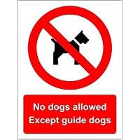 No dogs allowed Except guide dogs sign - Face adhesive reverse window sticker 200mm x 150mm