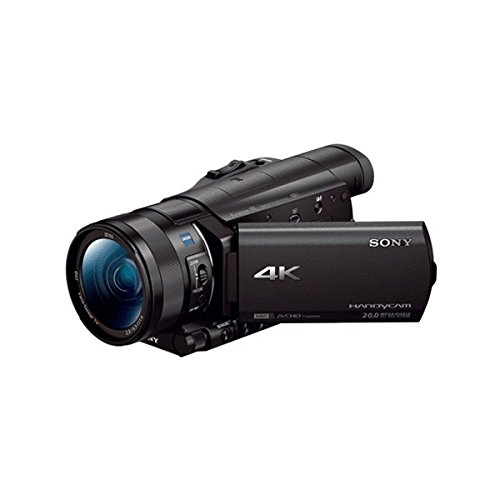 Sony Fdr-ax100e/be36 20mp Full Hd Camcorder (black)