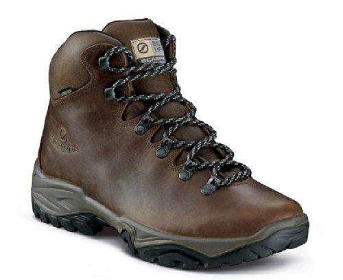 Scarpa Terra GTX Chaussures de Randonnée Hommes Multicolore